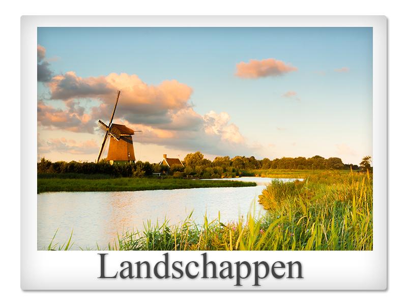 Polaroid landschappen